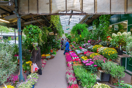 19 years old: Paris, France - October 19, 2016: flower market in Paris with unidentified people. The market is located on the Ile de la Cite and has numerous metal pavilions, the market is over 200 years old Editorial