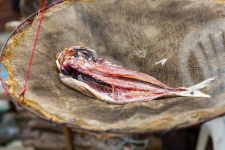 fish put down to dry in Tai O, Lantau Island, Hongkong