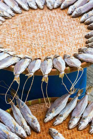 stockfish: fishes put down to dry in Tai O, Lantau Island, Hongkong Stock Photo