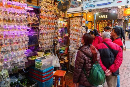 Hong Kong, Hong Kong - March 10, 2017: goldfish market in Kowloon, Hong Kong, with unidentified people. It is a popular tourist spot Editorial