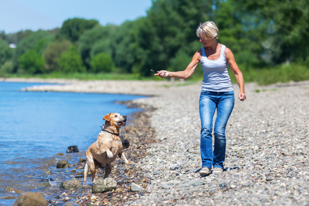 mature woman plays with a Labrador Retriever dog at riverbanks