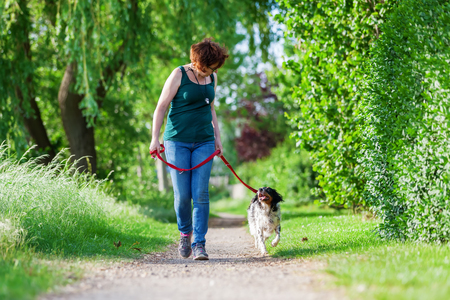 walking path: mature woman walking with Brittany dog at the leash on a country path