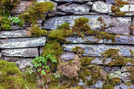 이끼와 드라이 스톤 벽의 배경 텍스처 스톡 콘텐츠