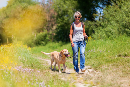 mature woman with rucksack hiking with a dog in the summer landscape Stock Photo