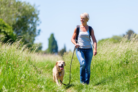 mature woman with rucksack hiking with a dog in the summer landscape Фото со стока