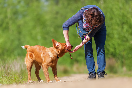 mature woman plays with a Nova Scotia duck tolling retriever on a forest path