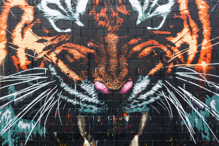 vandalism: Glasgow, UK - September 12, 2016: street art in Glasgow. Street art has moved from the beginnings of graffiti and vandalism to new modes where artists show messages or beauty of their art Editorial