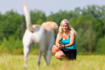 Mujer juega con un perro labrador en el prado Foto de archivo - 81882857