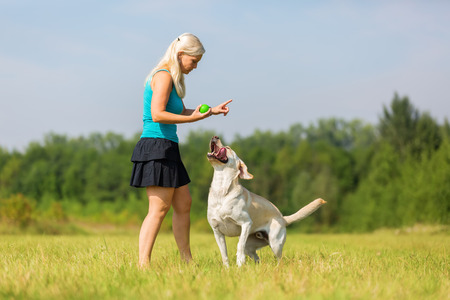 woman plays with a labrador dog on the meadow Stock Photo