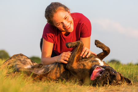 fondling: young girl pets her boxer dog outdoors