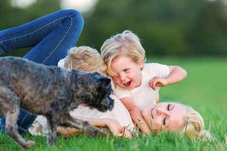 romp: picture of a woman who romps with her two sons and a dog on the grass Stock Photo