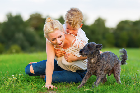 rollick: picture of a woman who romps with her son and a dog on the grass