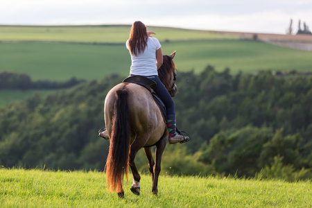 woman rides an Andalusian horse in the fields