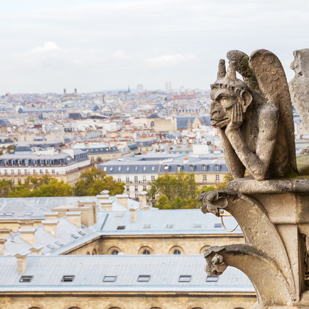 picture of a gargoyle of the Notre Dame in Paris, France, with aerial view of the city