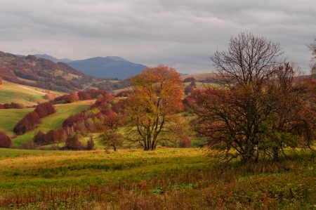Autumn in the mountains photo