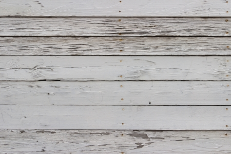 The white wood texture with natural patterns background Stock Photo - 19195461