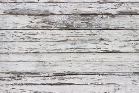old fence: The white wood texture with natural patterns background