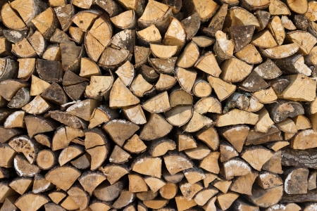 Pile of wood logs ready for winter  Stock Photo - 19623722