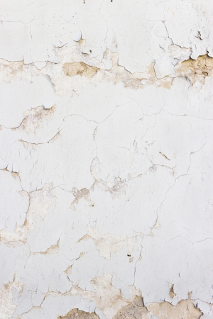 Old stucco wall background or texture Stock Photo - 20336178
