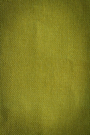 Green canvas background or texture