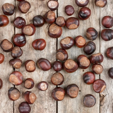 Closeup chestnuts on wooden desk photo