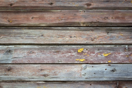 Wood wall texture for background usage