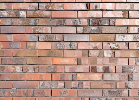 Background texture of a brick wall photo