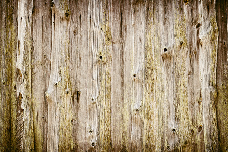 wood plank: The old wood texture with natural patterns Stock Photo