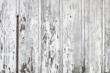 rough: White wood texture with natural patterns background