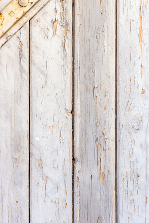 White wood texture with natural patterns background.