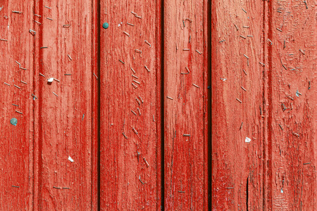 Staples on an old wooden wall 版權商用圖片