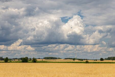 The blue sky with the clouds above the landscape cereal and windmill