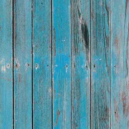 Ancienne planche peinte en bleu avec des motifs naturels.