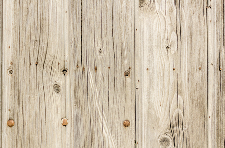 weathered: Close up shot to a textured white wooden fence