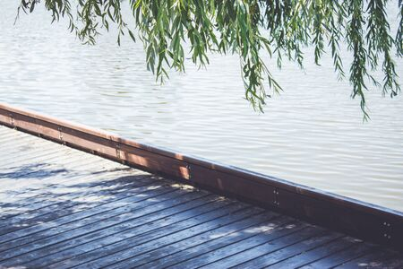 Willow leaves with a pontoon edge near water