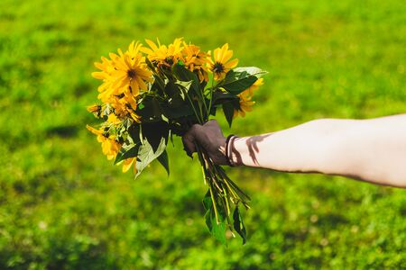 Hand giving flowers in nature - Celebration gift for a special person - Stretched person's arm holding a bouquet of wildflower plants with yellow petals