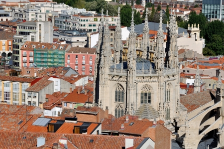 apartmant: Aerial view of Burgos with Cathderal