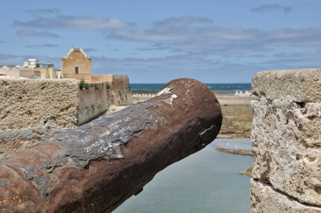 fortified: A canon of the Portuguese Fortified City of Mazagan, Morocco