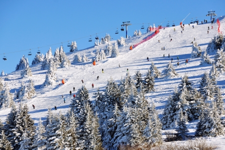 Slopes of winter resort Kopaonik, Serbia with trees