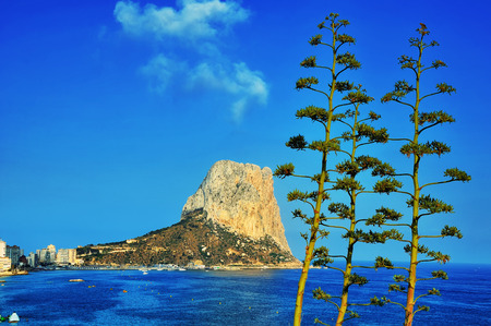 forefront: Coastline of Mediterranean Resort Calpe, Costa Blanca, Spain with Sea and mountain Penon de Ifach. Trees at the forefront Stock Photo