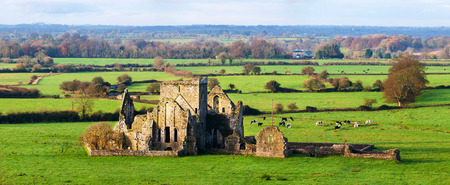 Cashel, Ireland. Panoramic view of ruins of an Hore Abbey in Cashel, Ireland. It is a ruined Cistercian monastery and famous landmark in Tipperary. Landscape with cows Stock Photo