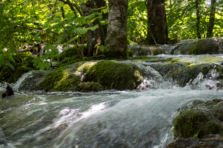 Small flowing lake in Plitvice with trees in summertime. Фото со стока