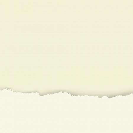 torn edges: The torn paper Illustration