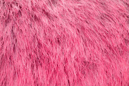 A pink fur  as a nice background photo