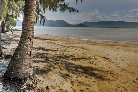 beach with palm tree and in the background the islands and the sea of andaman, on the bay of Phang Nga. Thailand 写真素材