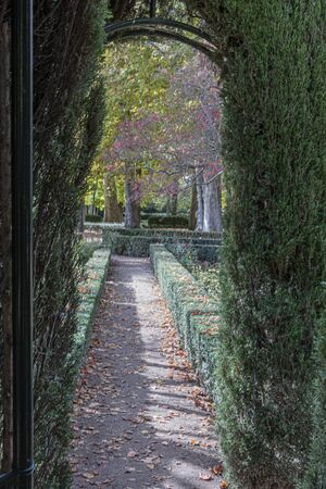 see of ornamental gardens in the real site of aranjuez in the city of the same name. madrid community spain.