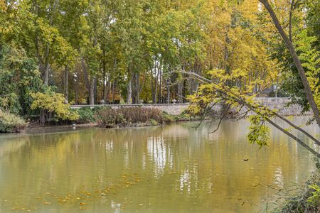 Backwater of the Tagus River as it passes through the Aranjuez Gardens. Community of Madrid Spain. 版權商用圖片
