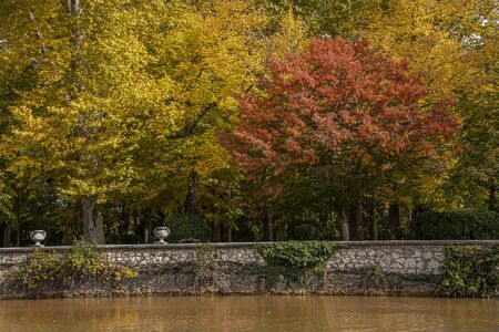 Tajo river bank as it passes through the gardens of Aranjuez one autumn day. Madrid's community. Spain