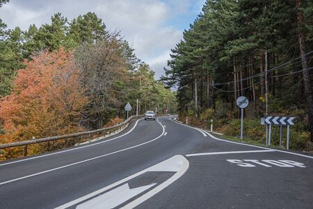 Zigzagging road M607, crossing a pine forest one autumn day near the summit of Navacerrada. Madrid's community. Spain.