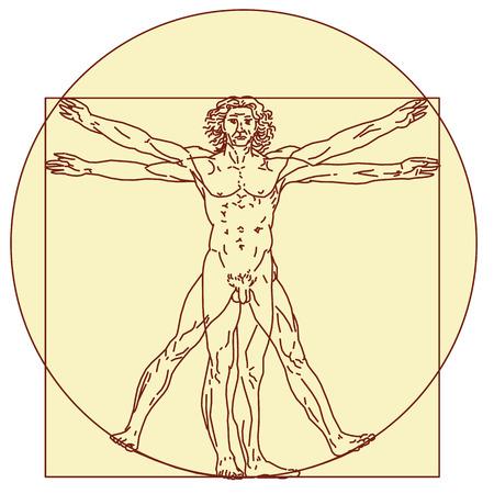 mona lisa: Vitruvian Man Illustration